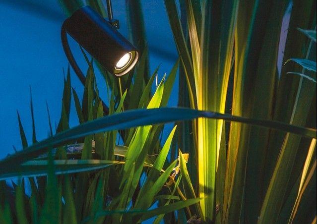 Lamp Grillo by DAVIDE GROPPI