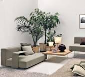 Air Wildwood coffee table by LAGO